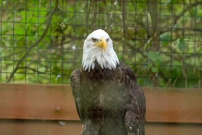 Saturday - Lehigh Valley Zoo