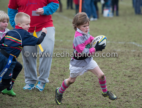 Under 7's, Franklin's Gardens, 2 March 2013