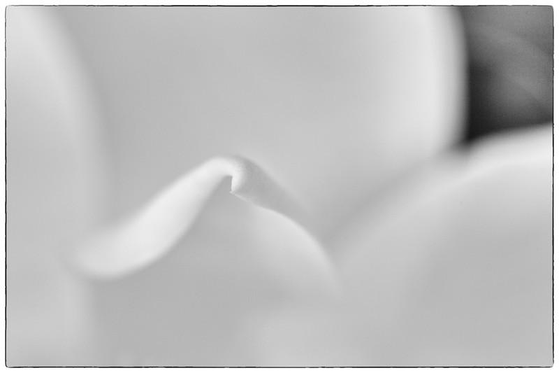 _MG_4169-Edit-Edit.jpg