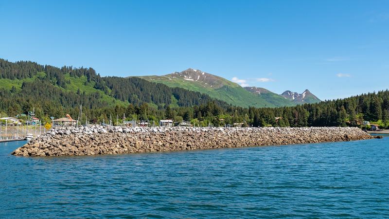 AlaskaSummer2018-1064.jpg