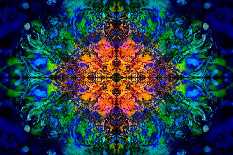 20201012-_DSC4552-Edit-mirror-2-3.jpg