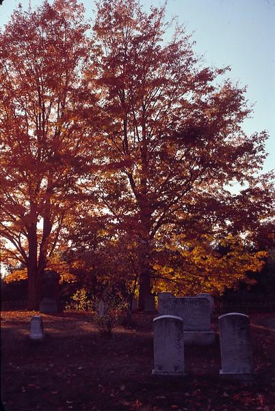 1978 09 gravestones 5.jpg