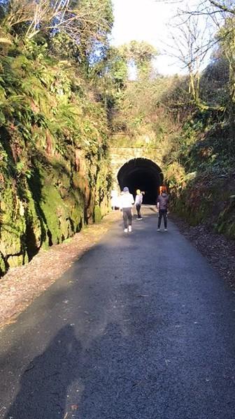 tunnel greenway (2).jpg