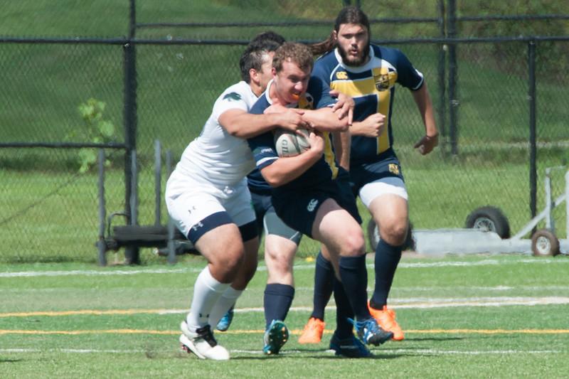 2015 Michigan Rugby vs. Norte 600.jpg