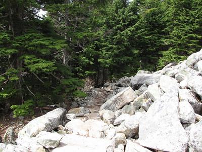 2010_05_16 - Mount Pilchuck