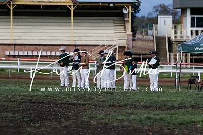 NSW ASH Breeders Champs Incorporating NSW Youth Show - Saturday