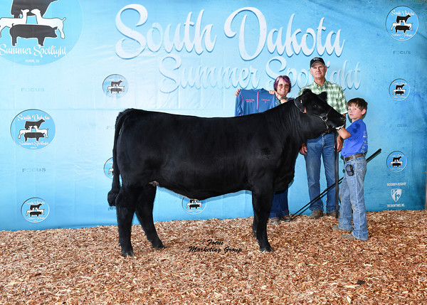 Cattle Show Backdrops