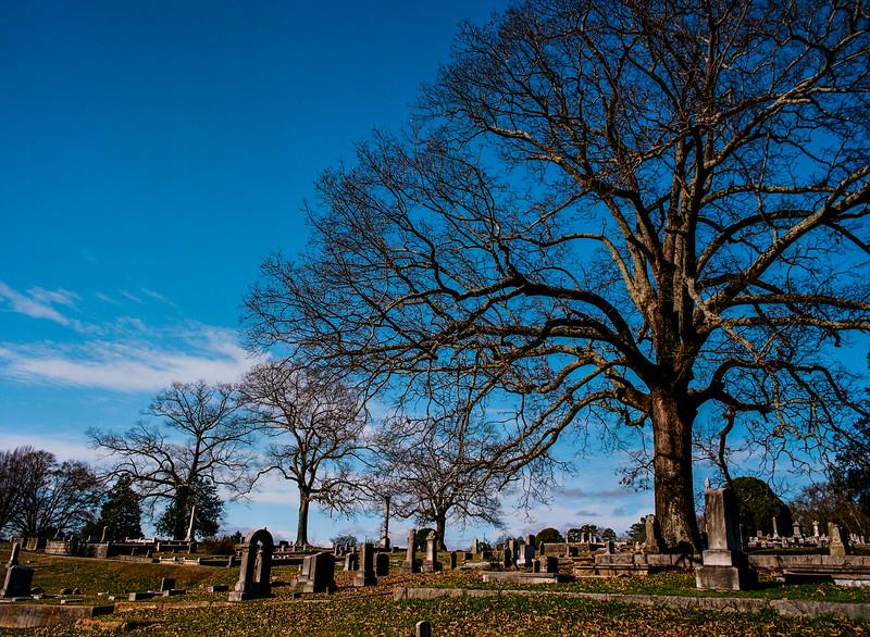 120-cemetery-GA20160113_0001.jpg