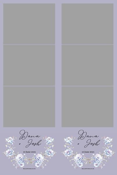 Copy of Copy of Hairy Anemones Flower Strips 6x4 photo print .jpg