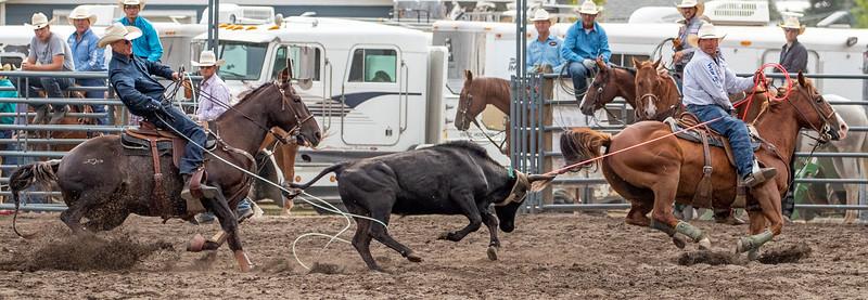 2019 Rodeo B (212 of 1309).jpg