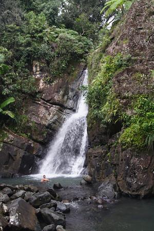 El Yunque Tropical Rain Forest, Puerto Rico