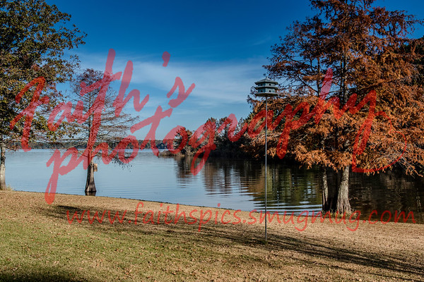 Lake Toledo Bend, Louisianna  November 2018