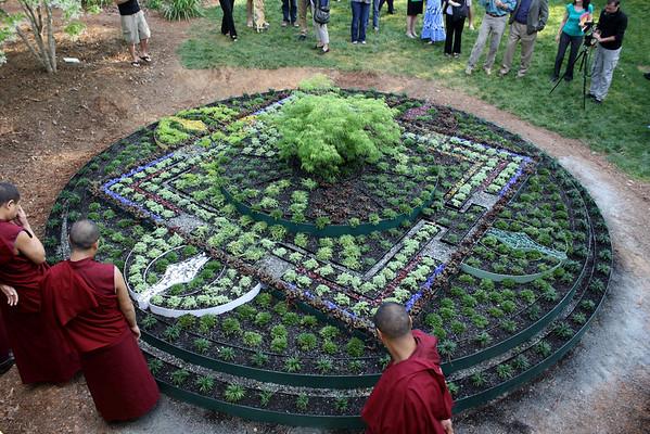Living Mandala - 2012
