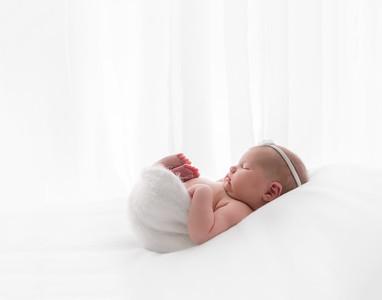 Timeless Newborn