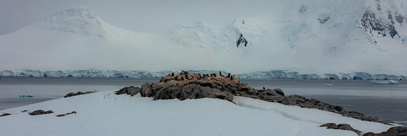 2019_01_Antarktis_05153.jpg