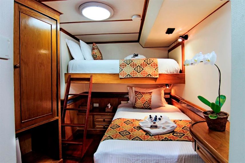 budget cabin.jpg