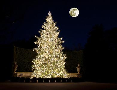 Longwood Gardens Christmas 2010