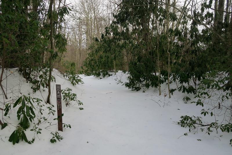 Mac's Gap-Big Green Trail Junction