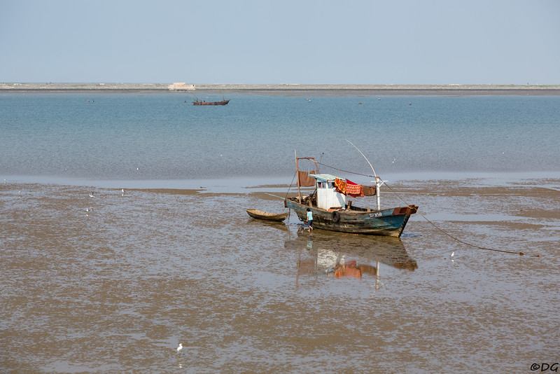 North Korea, Nampo. Fishing boat at low tide outside of the West Sea Barrage.