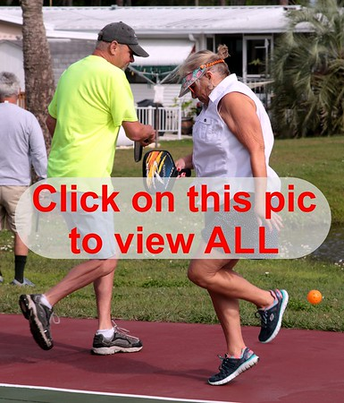 2019 Manatee RV Park PickleBall Tourney