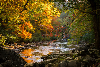 Fall, Smoky Mountains National Park