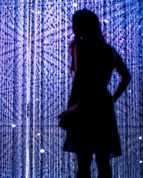 Art Science Emily Stargazer-2.jpg