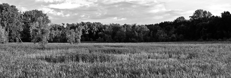 20100628_lake_to_lake_trail_004BW.jpg