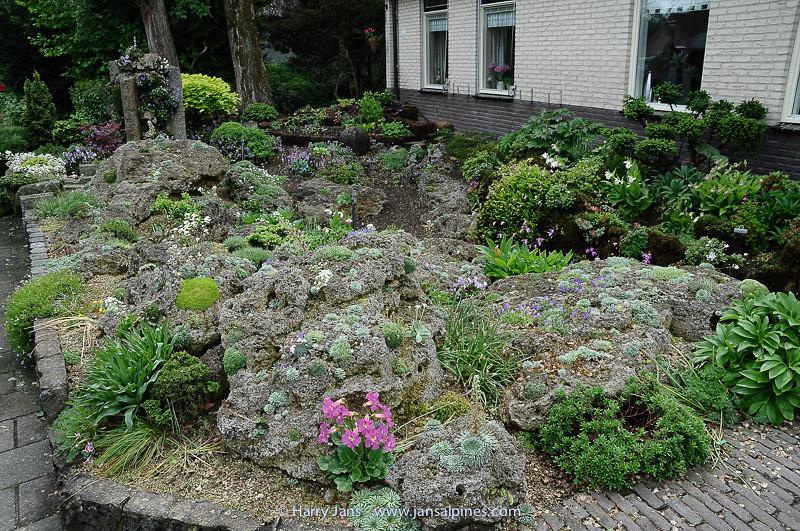 front rock garden