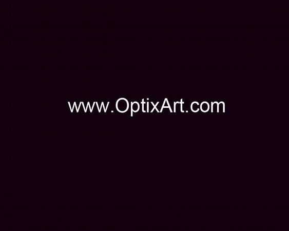 OptixArt - web address-1 White Text.jpg