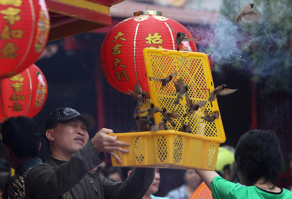 . An Indonesian ethnic Chinese releases birds during Lunar New Year celebrations at a temple in Jakarta, Indonesia, Friday, Jan. 31, 2014. Ethnic Chinese communities in the world\'s most populous Muslim country are celebrating the start of the year of the horse. (AP Photo/Tatan Syuflana)