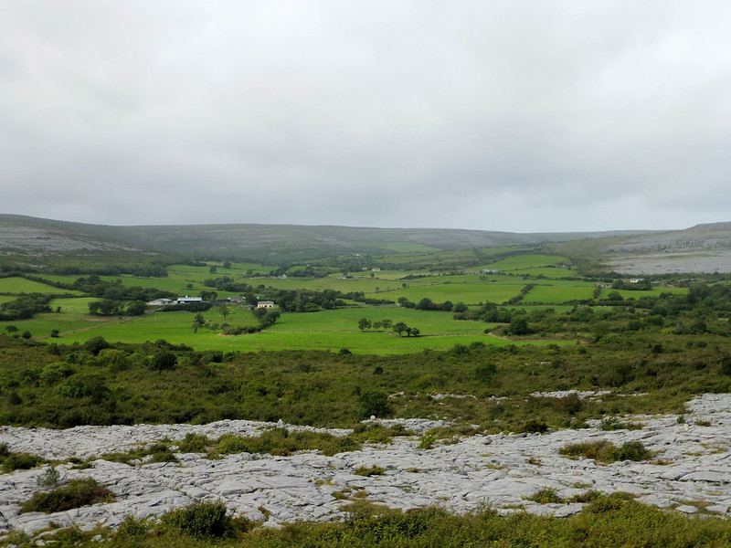 Burren_farmland viewed from the switchbacks.jpg