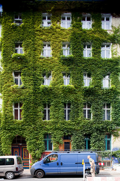 Facade covered by ivy, Auguststrasse, Berlin, Germany