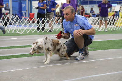 BARKing Mayhem 2015