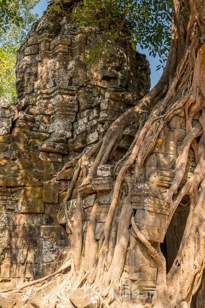 Ta Som Temple, Angkor Park, Siem Reap, Cambodia
