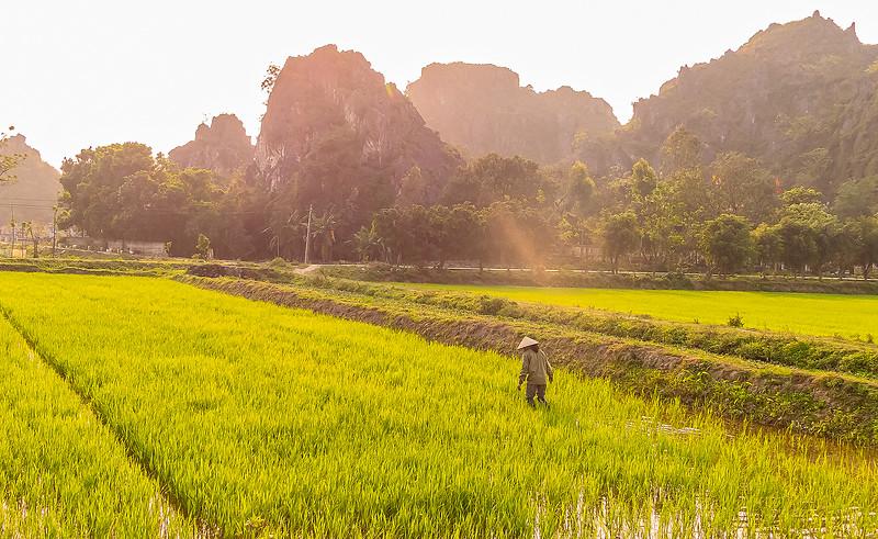 Vietnam Ninh Binh_P1080567_1.jpg