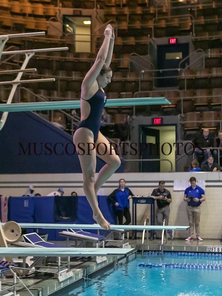 Swimming-diving vs Seton Hall_1281.jpg