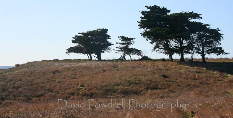 Hillside near Perkos.jpg