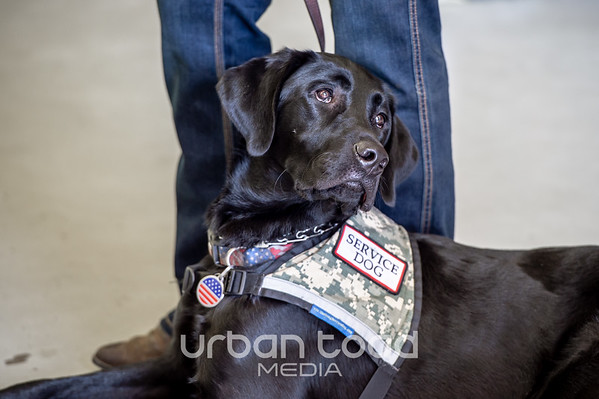 Patriot Assistance Dogs