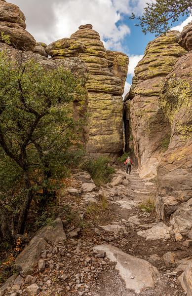 Chiricahua National Monument Hiker #3