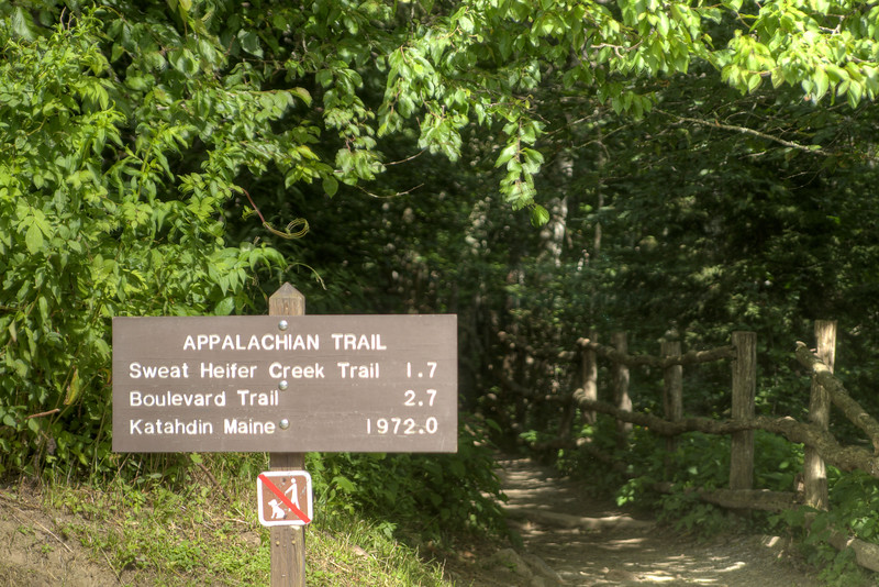 A sign along the Appalachian Trail, marking the distance to northern terminus at Katahdin Mountain, at the Newfound Gap Overlook at the Great Smoky Mountains National Park in Cherokee, NC on Sunday, August 4, 2013. Copyright 2013 Jason Barnette