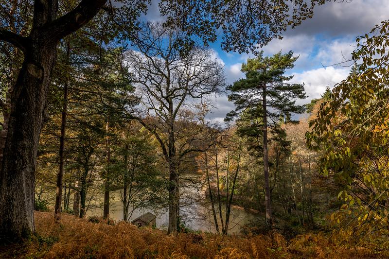 Wakehurst_Autumn-6152.jpg
