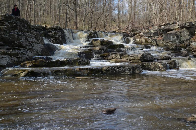 Lori Wickecheoke Reserve 3.jpg