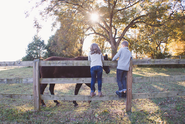 {Fall Sessions} Wilson Family