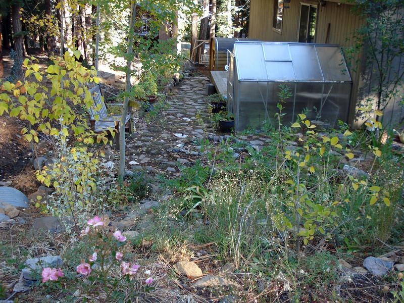 Garden 10-20-2010