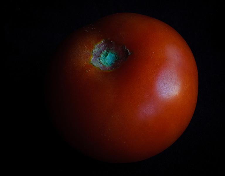 Tomato-6016.jpg
