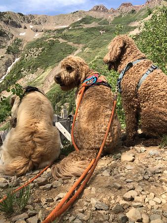 Diorite Peak recon June 16, 2021