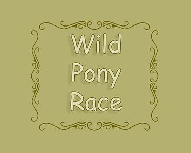 Irvine 2018 Wild Pony Race