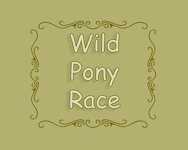Wild Pony Race