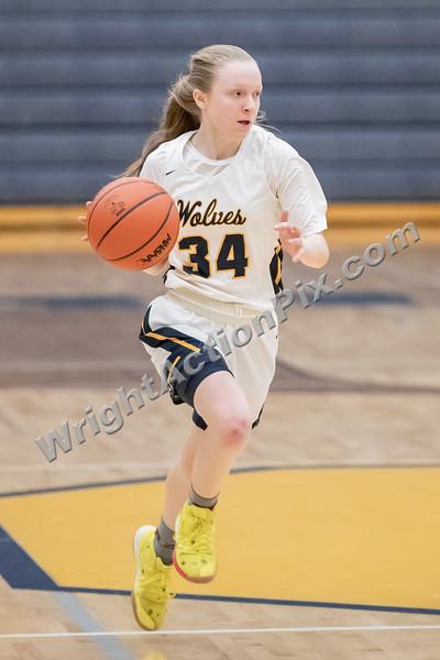 2019/2020 Clarkston Girls Varsity Basketball