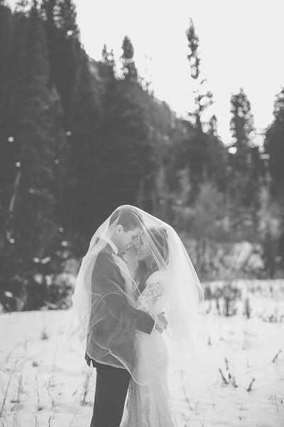 Bridals-128.jpg